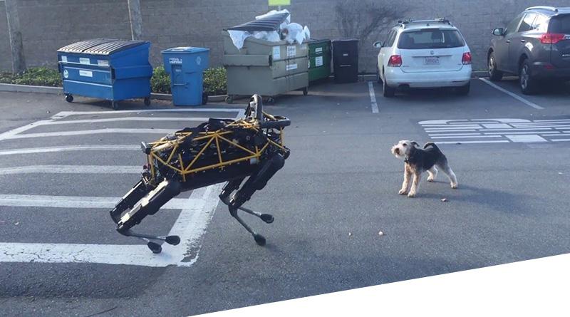 SpotMini: встречайте самого проворного робота собаку