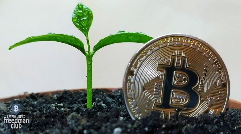 Bitcoin-odna-iz-samyh-jekologicheski-chistyh-ndustrij-schitajut-majnery