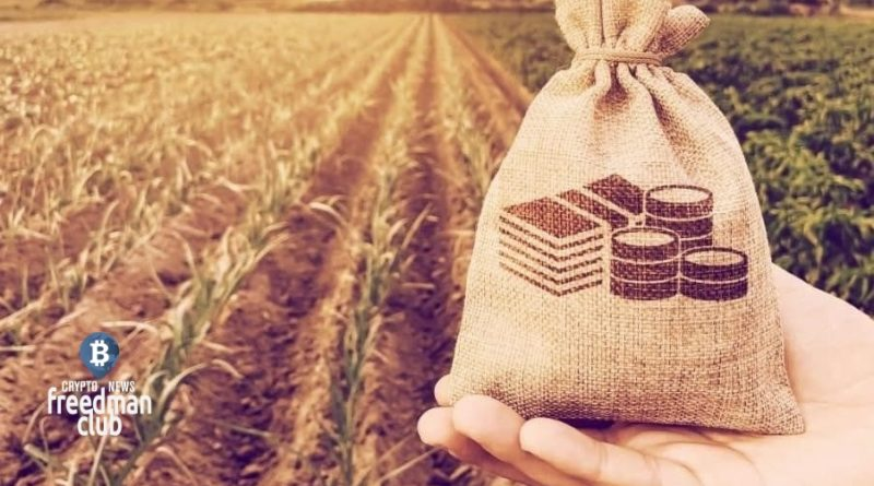 fermerstvo-v-cryptovalutah