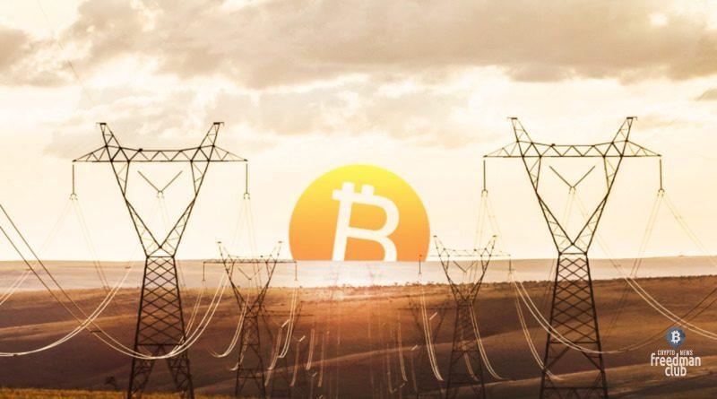 bitcoin-storonnik-tim-draper-osudil-elon-musk-tesla-ecology