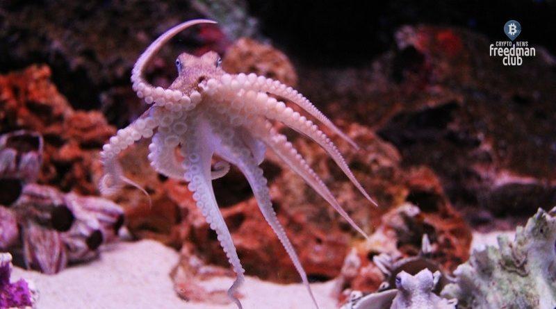 kraken-reshili-peresmotret-plan-prryamogo-listinga-posle-slaboy-popytki-coinbase