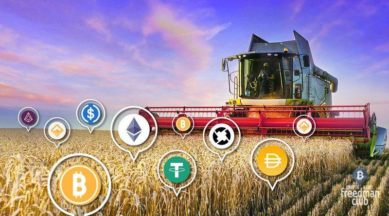farming-chto-jeto-kak-funkcioniruet-kak-kakie-preimushhestva-i-riski