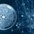 Input Output объявляет о запуске тестовой сети AlonzoBlue 2.0