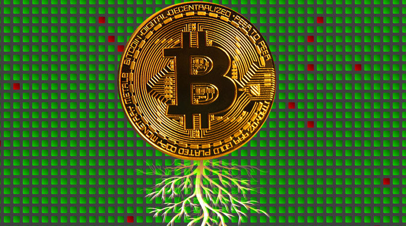 pervoe-obnovlenie-bitcoin-za-chetyre-goda-Taproot-Schnorr