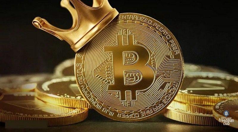 Bitcoin (BTC/USD): quotazione e grafico in tempo reale | giuseppeverdimaddaloni.it