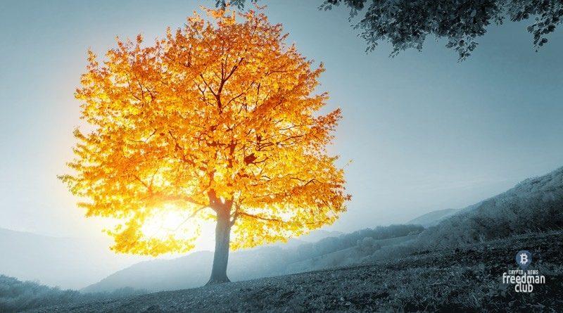 goldentree-asset-management-Bitcoin-jeto-vygodnyj-aktiv-dlja-investicij