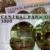 eNaira, цифровая валюта Нигерии (CBDC) дебютирует сегодня